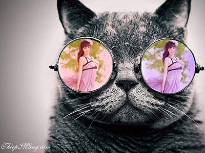 Khung ảnh mắt kính Mèo