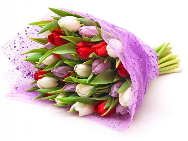 Kết quả hình ảnh cho bó hoa tulip