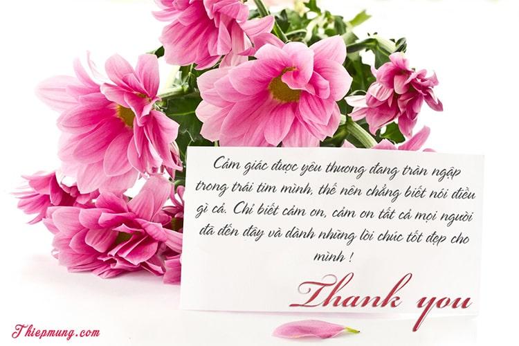 Tạo thiệp hoa cảm ơn trực tuyến đẹp