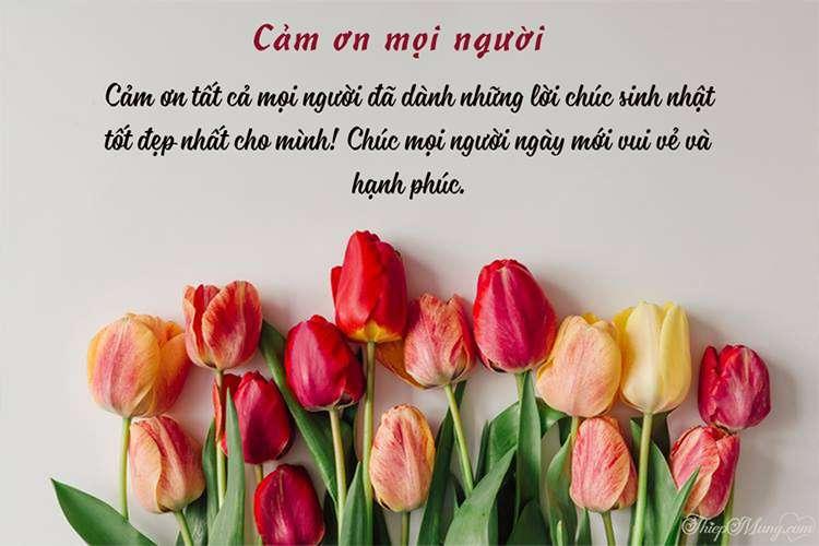 Thiệp hoa cảm ơn sau sinh nhật đẹp và ý nghĩa nhất