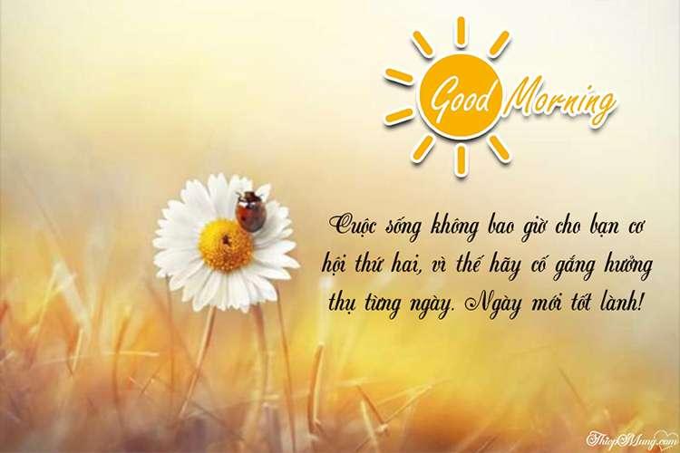 Tạo thiệp chào ngày mới đẹp lung linh ý nghĩa nghĩa