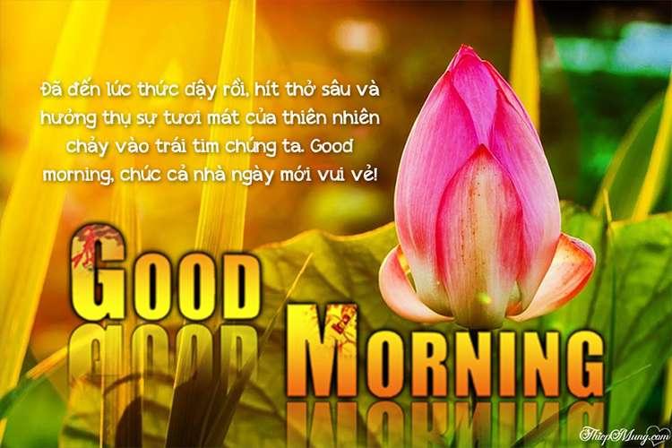 Hình ảnh thiệp chúc buổi sáng cho cả ngày may mắn