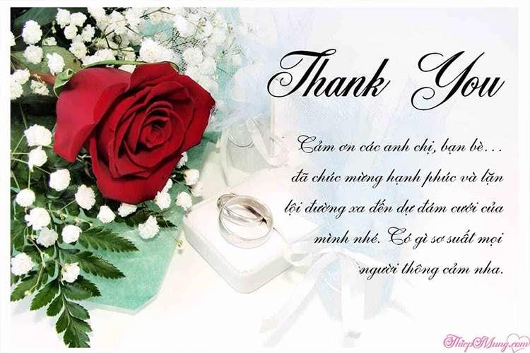 Gửi thiệp cảm ơn sau đám cưới hoa hồng lãng mạn